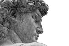 Cabeça de uma estátua famosa por Michelangelo - David de Florença, isolada no branco fotografia de stock royalty free
