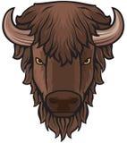 Cabeça do búfalo ilustração royalty free