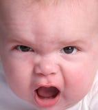 Cabeça do bebê Imagens de Stock Royalty Free