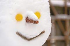 A cabeça do boneco de neve do close-up Imagens de Stock