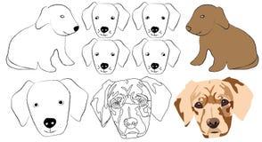 Cabeça do cão Imagens de Stock