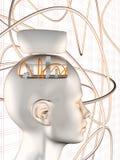 Cabeça do cérebro da roda denteada ilustração stock