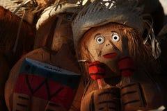 Cabeça do coco Foto de Stock