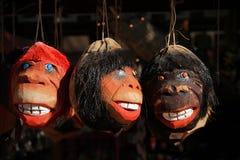 Cabeça do coco Foto de Stock Royalty Free