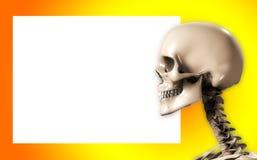 Cabeça do crânio com sinal em branco Imagens de Stock Royalty Free