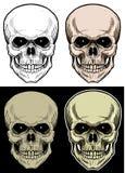 Cabeça do crânio, desenho da mão com cor de 4 variações Imagens de Stock