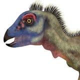 Cabeça do dinossauro de Hypsilophodon ilustração royalty free