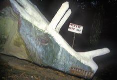 Cabeça do dinossauro, Hadley sul, Massachusetts Imagem de Stock