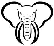 Cabeça do elefante Foto de Stock