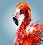Cabeça do flamingo Ilustração do vetor ilustração royalty free