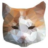 Cabeça do gato Imagem de Stock