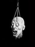 Cabeça do horror Fotos de Stock Royalty Free