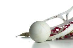 Cabeça do Lacrosse com uma esfera cinzenta Fotografia de Stock Royalty Free