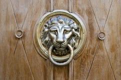 A cabeça do leão Fotos de Stock Royalty Free