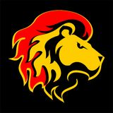 Cabeça do leão Foto de Stock Royalty Free