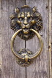 Cabeça do leão, aldrava de porta Fotos de Stock Royalty Free