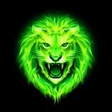 Cabeça do leão do fogo. ilustração royalty free