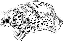 Cabeça do leopardo ilustração do vetor