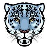 Cabeça do leopardo de neve ilustração royalty free