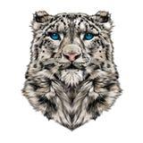 Cabeça do leopardo de neve ilustração stock