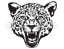 Cabeça do leopardo Ilustração Fotografia de Stock