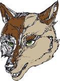 Cabeça do lobo com olhos verdes Foto de Stock