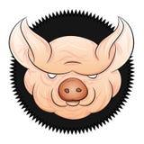 Cabeça do porco Fotos de Stock