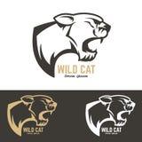 Cabeça do puma Gato selvagem Fotos de Stock Royalty Free