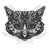 Cabeça do ` s do gato ilustração stock