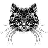 Cabeça do ` s do gato ilustração royalty free