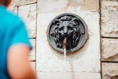 A cabeça do ` s do leão deu forma à fonte de parede italiana imagem de stock royalty free
