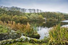 Cabeça do St Abb do Loch do atoleiro imagens de stock royalty free