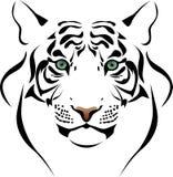 Cabeça do tigre Fotografia de Stock Royalty Free