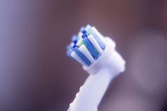 Cabeça do toothbrush elétrico foto de stock