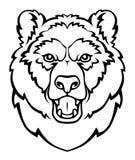 Cabeça do urso Imagem de Stock Royalty Free