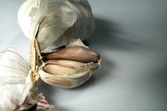 Cabeça dos bulbos de alium sativum do alho indicada no fundo branco imagem de stock