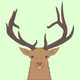 Cabeça dos cervos da floresta Fotografia de Stock Royalty Free