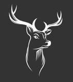 Cabeça dos cervos no fundo preto Fotografia de Stock