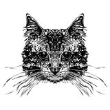 Cabeça dos gatos ilustração royalty free