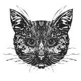 Cabeça dos gatos ilustração do vetor