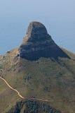 Cabeça dos leões em Cape Town fotografia de stock royalty free