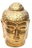 Cabeça dourada. Foto de Stock Royalty Free