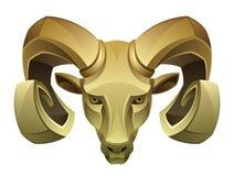 Cabeça dourada da ram Fotografia de Stock