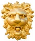 Cabeça dourada do leão Fotos de Stock