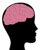 Cabeça e cérebro ilustração do vetor