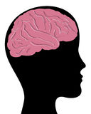 Cabeça e cérebro Foto de Stock Royalty Free