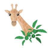 Cabeça e pescoço de um girafa em um estilo liso com as plantas tropicais verdes ilustração do vetor