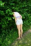 Cabeça escondendo da mulher nos arbustos imagem de stock