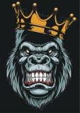 Cabeça feroz do gorila Fotos de Stock Royalty Free