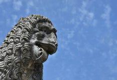 Cabeça feroz do leão em Lucca Foto de Stock